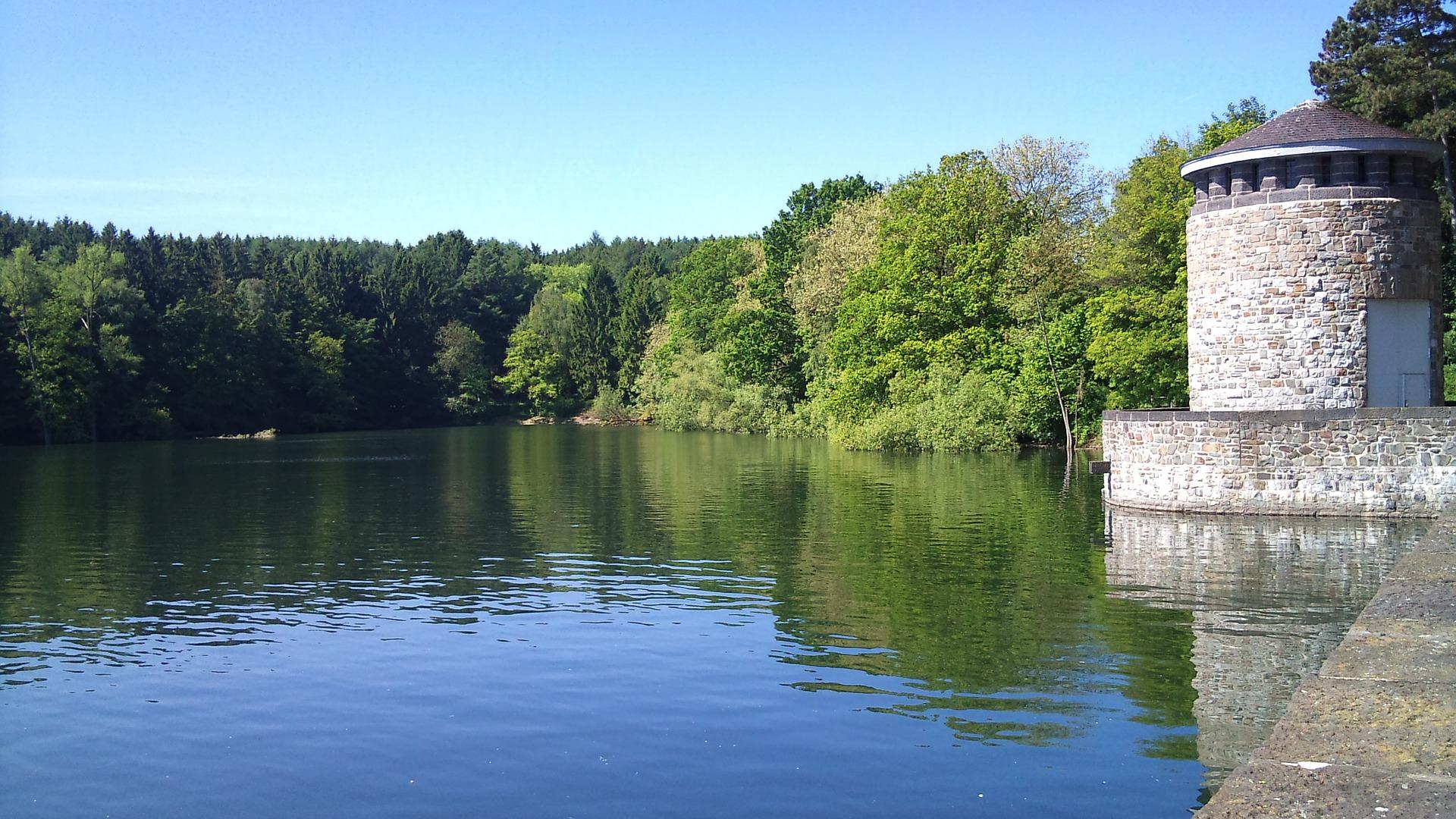 Der Möhnesee mit Wald und einem Burgturm.