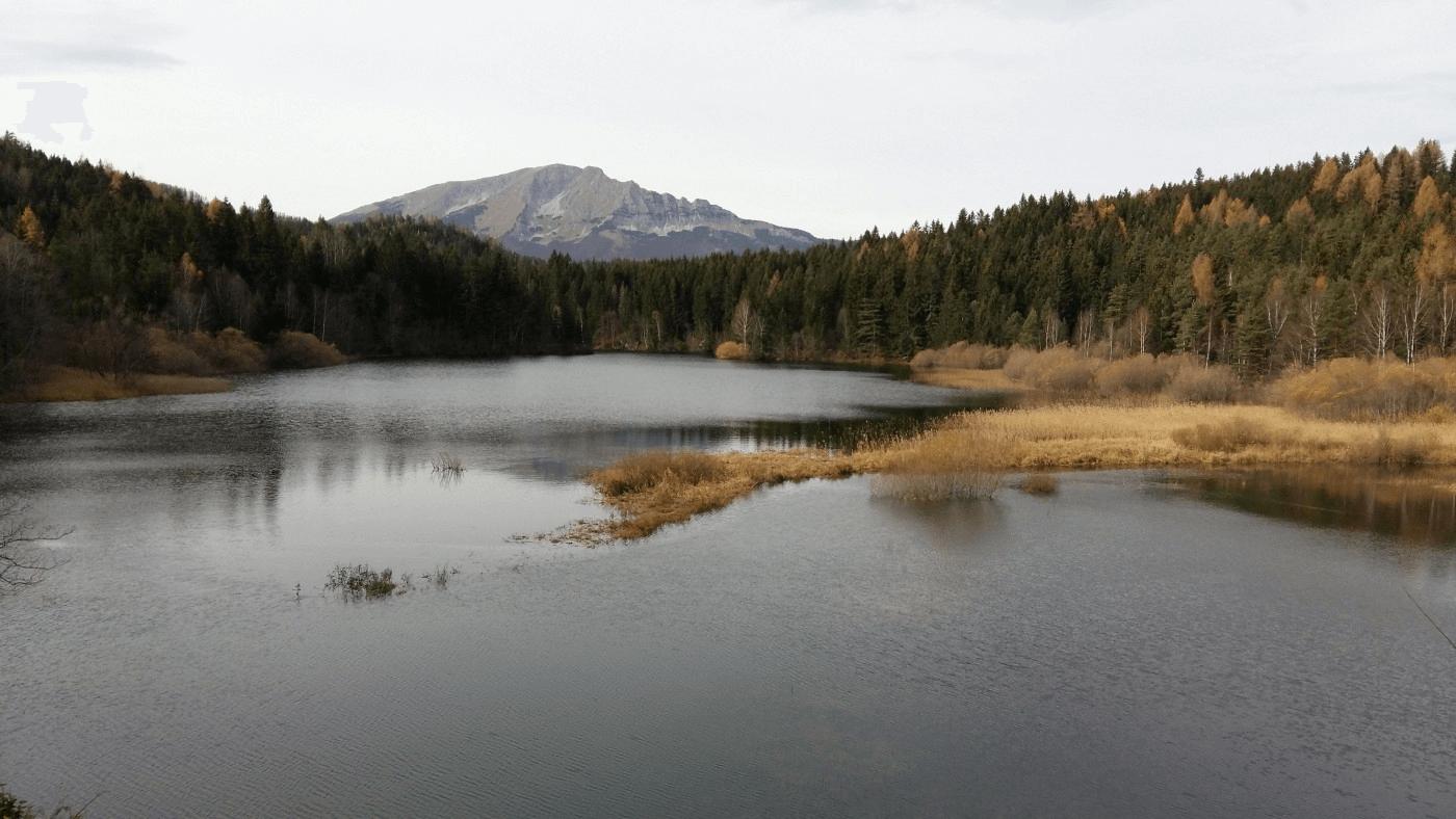 Stausee Erlaufklause mit Berg und herbstlichen Bäumen.