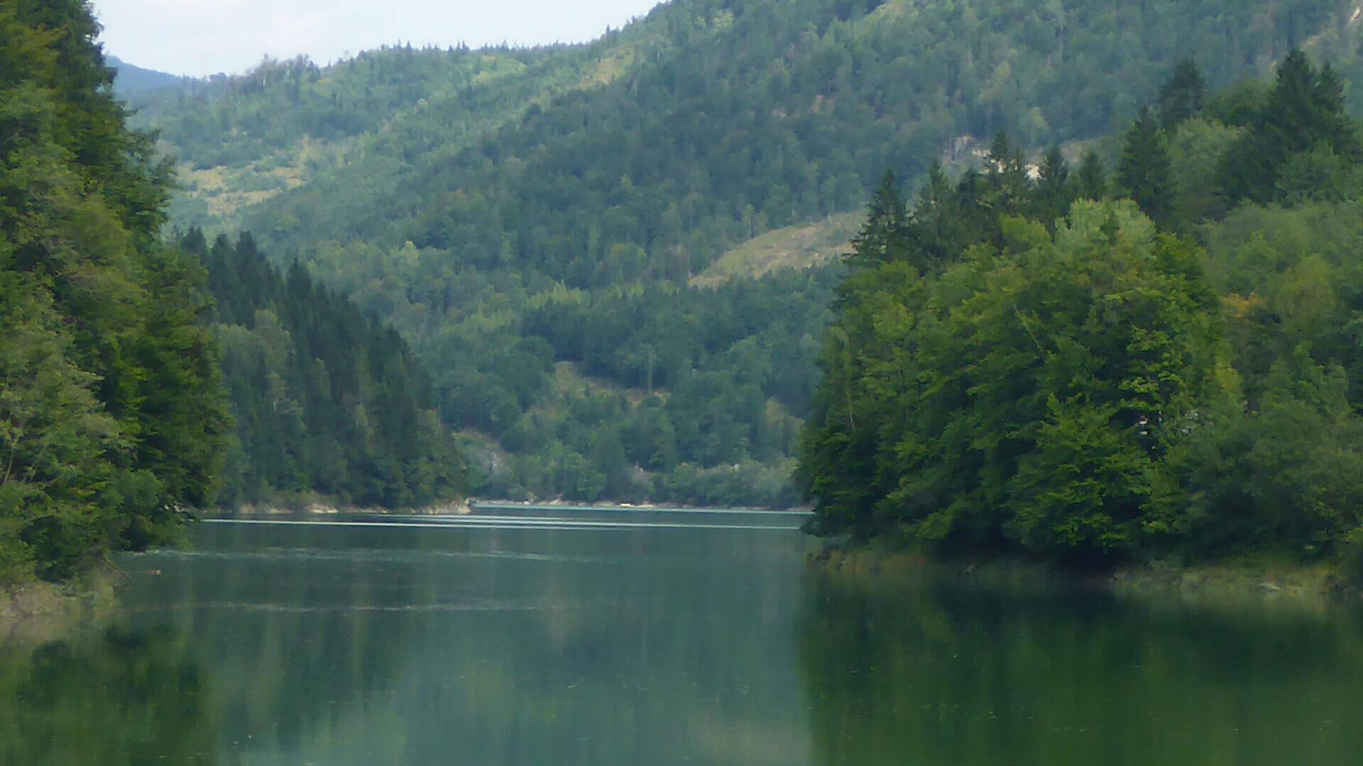 Der Wiestal Stausee mit schönem Waldpanorama.