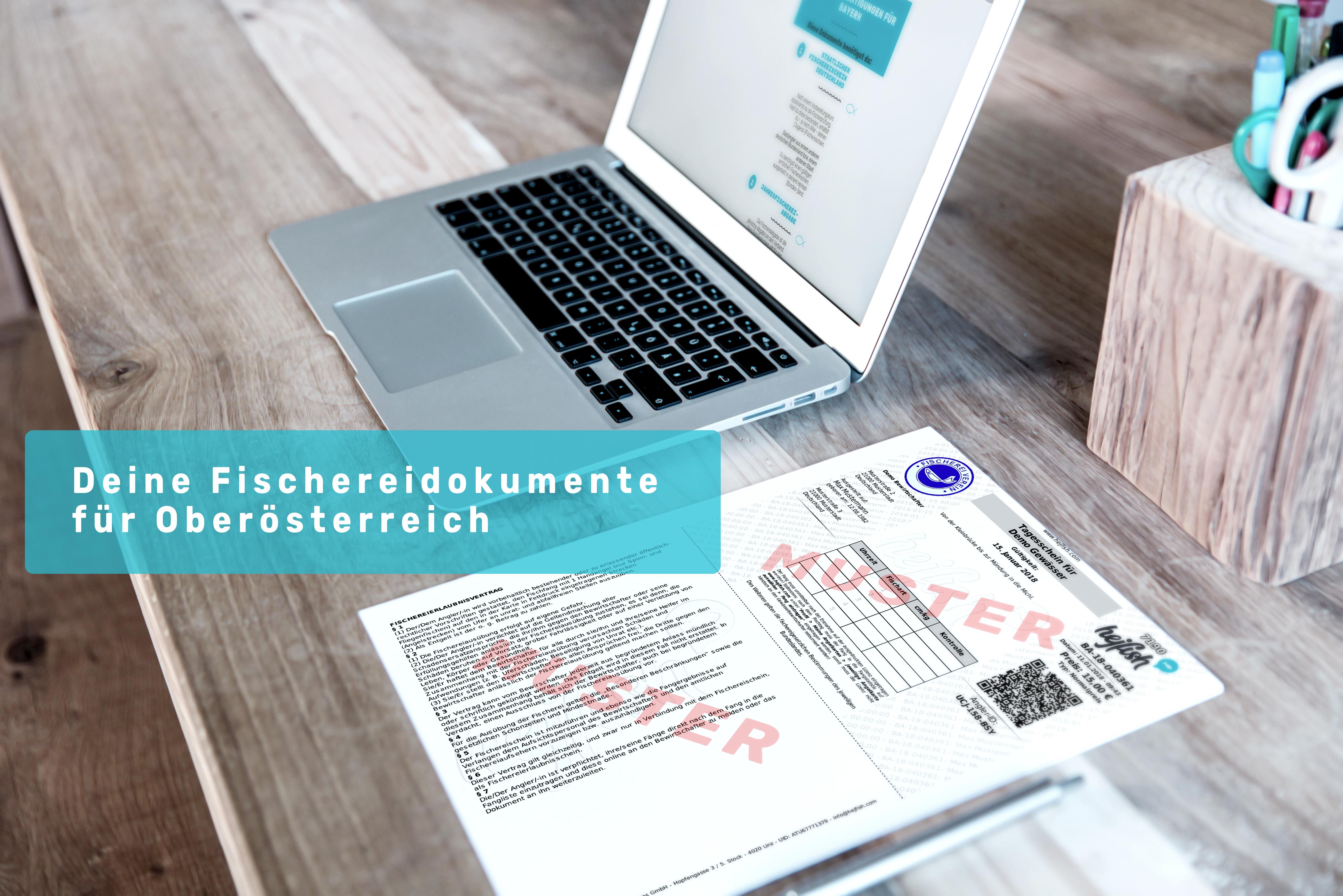 Schreibtisch und Laptop mit Angeln in Oberösterreich.