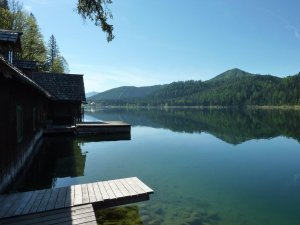 Der naturbelassene Erlaufsee lädt zum Angelurlaub am See