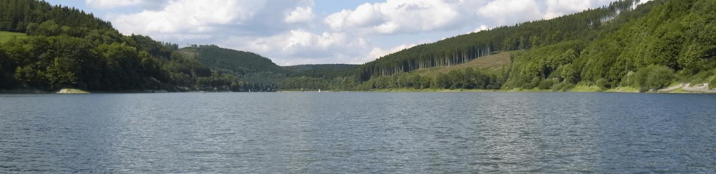 Der Hennesee mit Waldpanorama.