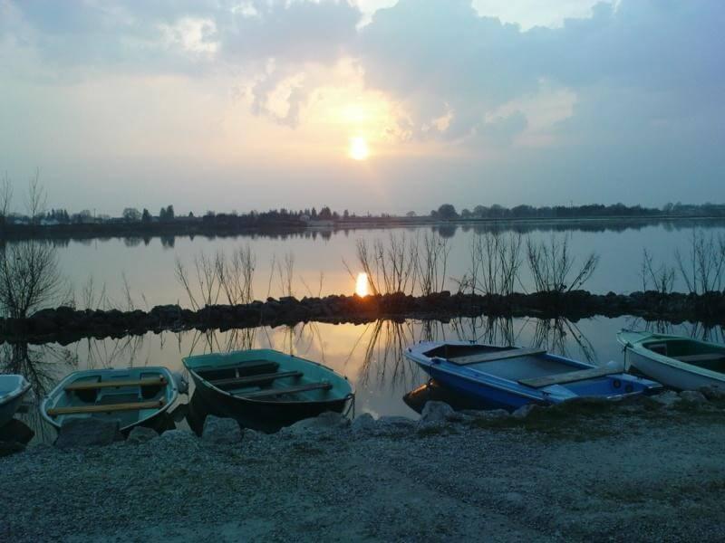 Der Hafen am Kronthaler Weiher mit der Abendsonne.