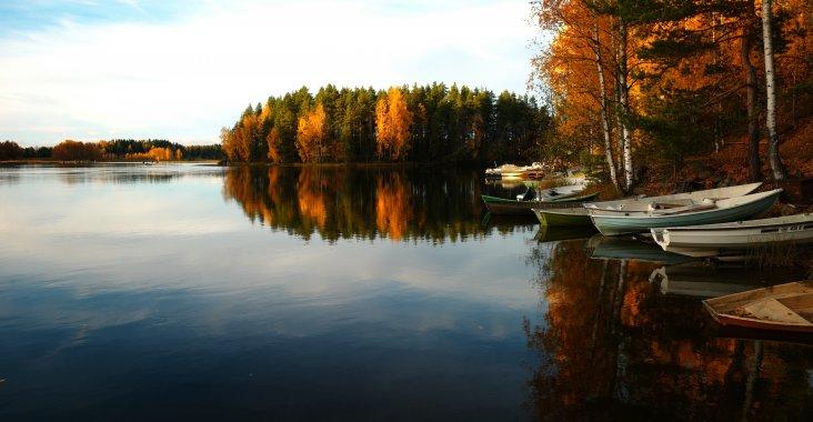 Angeln im Herbst