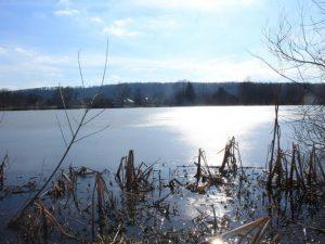 Blick auf den Oderparksee