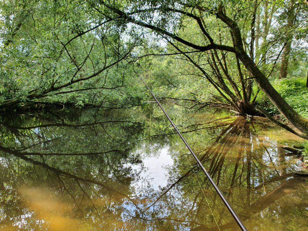 Flacher Bereich direkt am Ufer an der Aist für das Angeln im Frühling