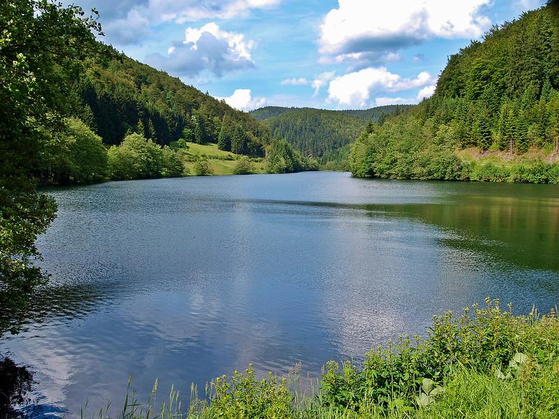 Angeln im Thüringer Wald