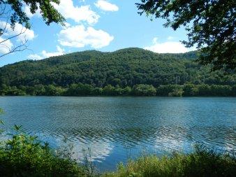 Affolderner See mit Wald im Hintergrund.