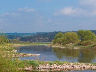 Schöner Angelspot der Weser in Beverungen
