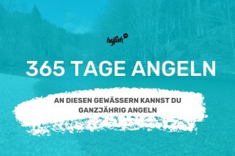 grafik mit weißer schrift 365 tage angeln