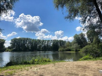 Der Irnsinger weiher gesehen von einer bucht mit Wald und ein paar Wolken am himmel.