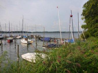 © Landessportfischerverband Schleswig-Holstein e.V.